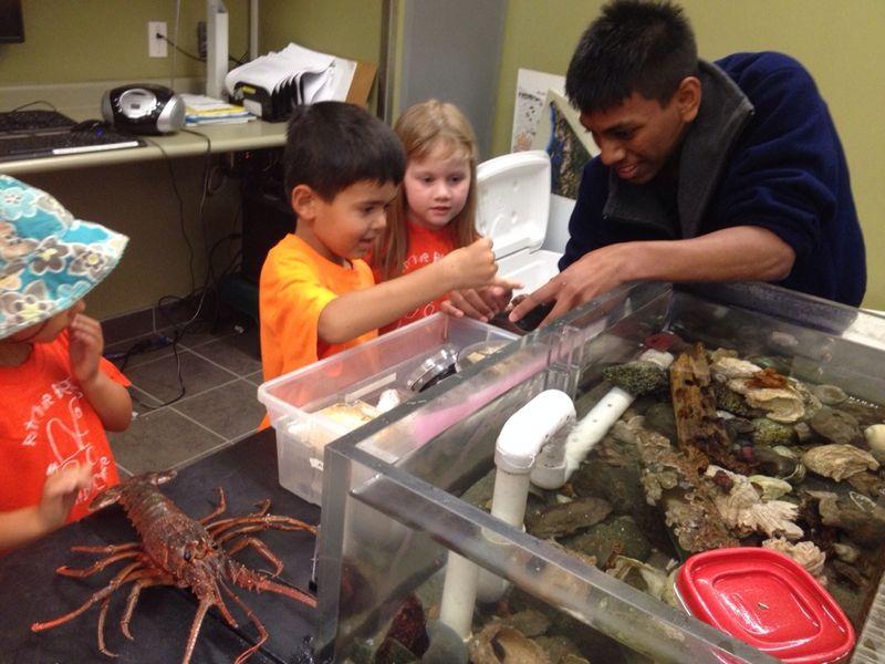 Aquarium Visit 1
